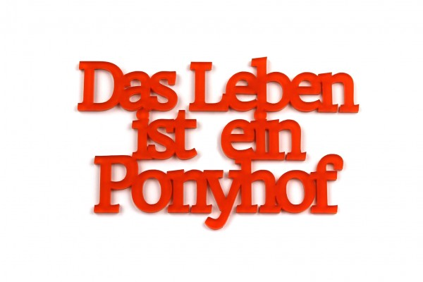 Acryltypo® - Das Leben ist ein Ponyhof