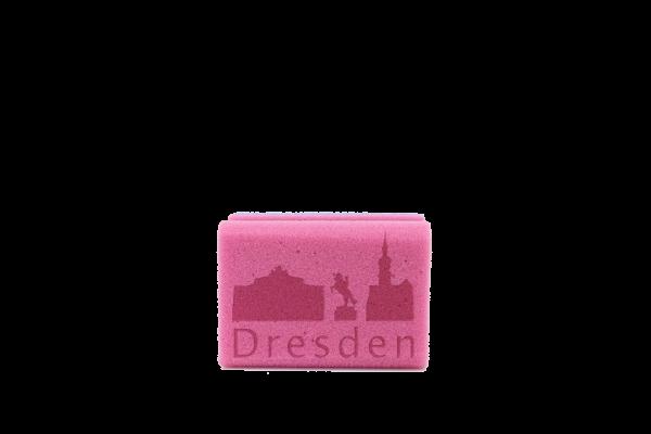 Cityschwamm - Skyline Dresden